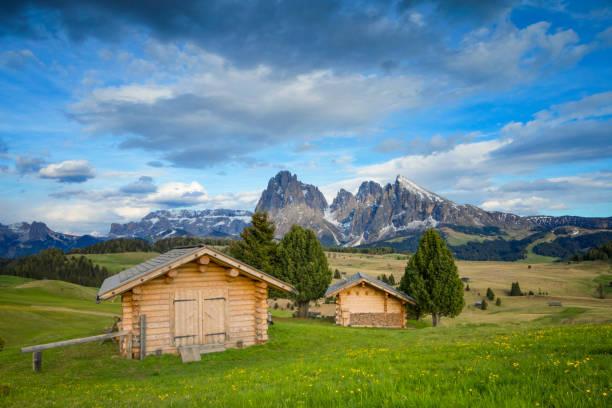 alpe di siusi, im frühling mit mount langkofel in südtirol, italien - seiser alm stock-fotos und bilder