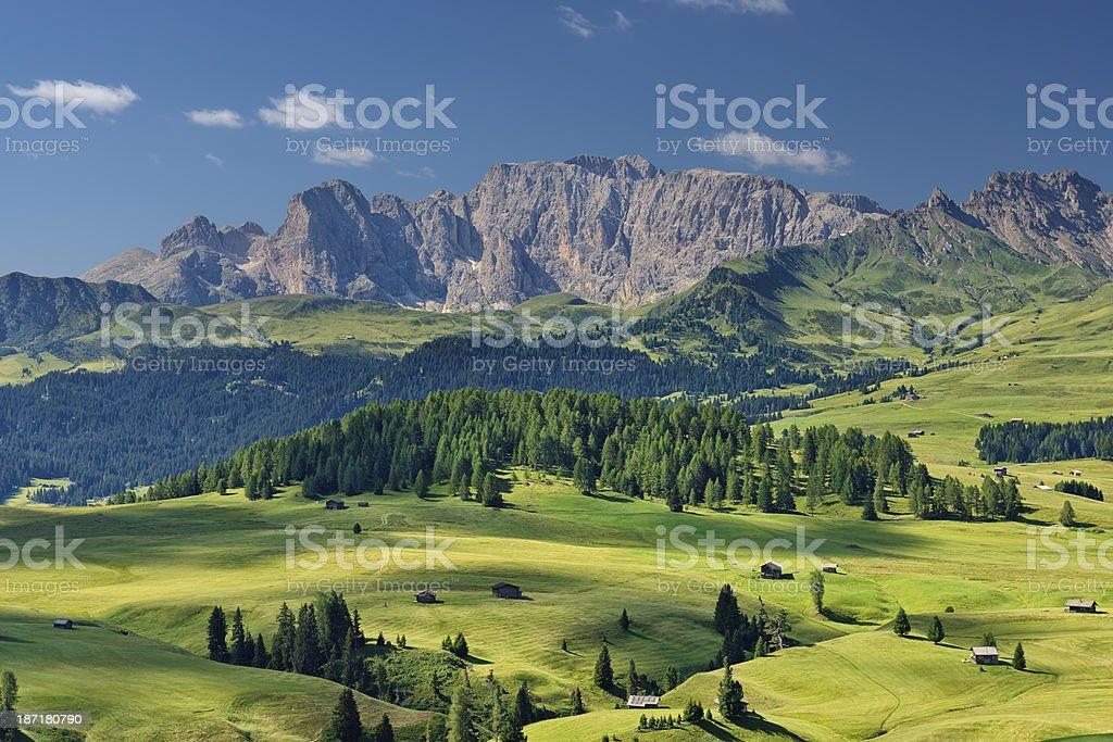 Alpe di Siusi (Dolomiti) stock photo
