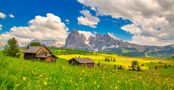 istock Alpe di Siusi - Seiser Alm with Sassolungo - Langkofel mountain group in background at sunset. Yellow spring flowers and wooden chalets in Dolomites, Trentino Alto Adige, South Tyrol, Italy, Europe 1180824255
