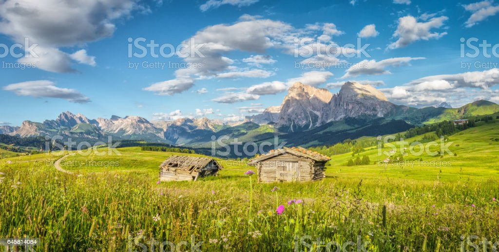 Alpe di Siusi, South Tyrol, Italy stock photo