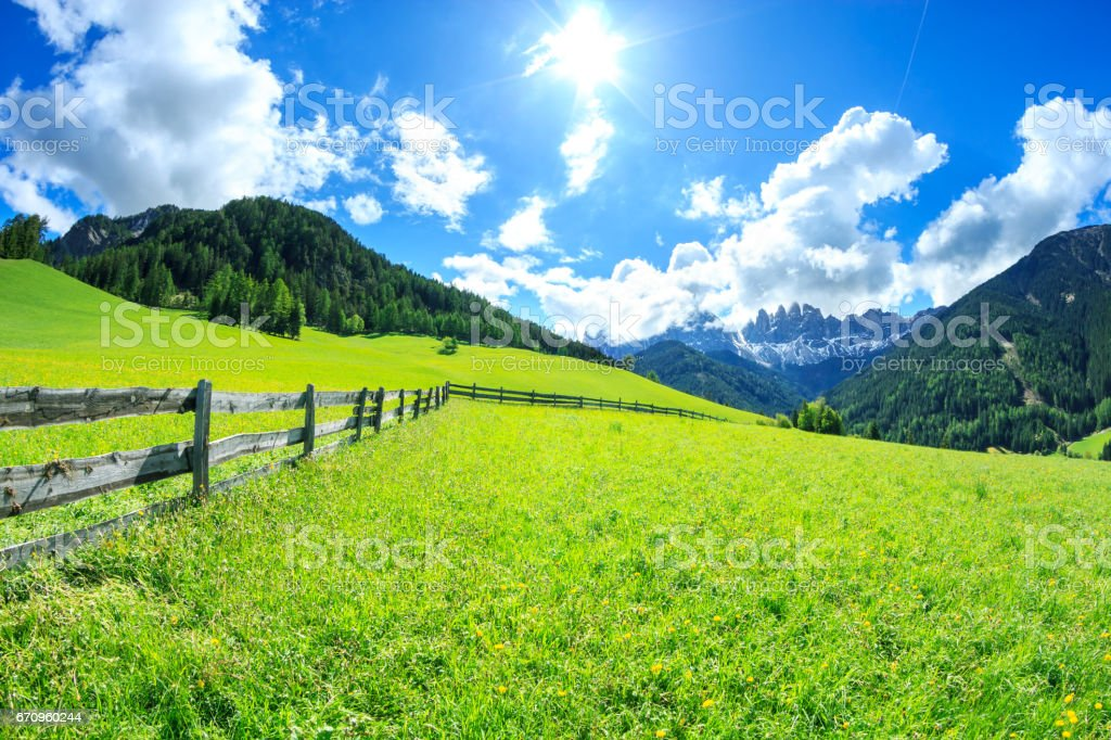 Alpen Landscape -  Green field and Sunny Blue Sky - Spring meadow stock photo