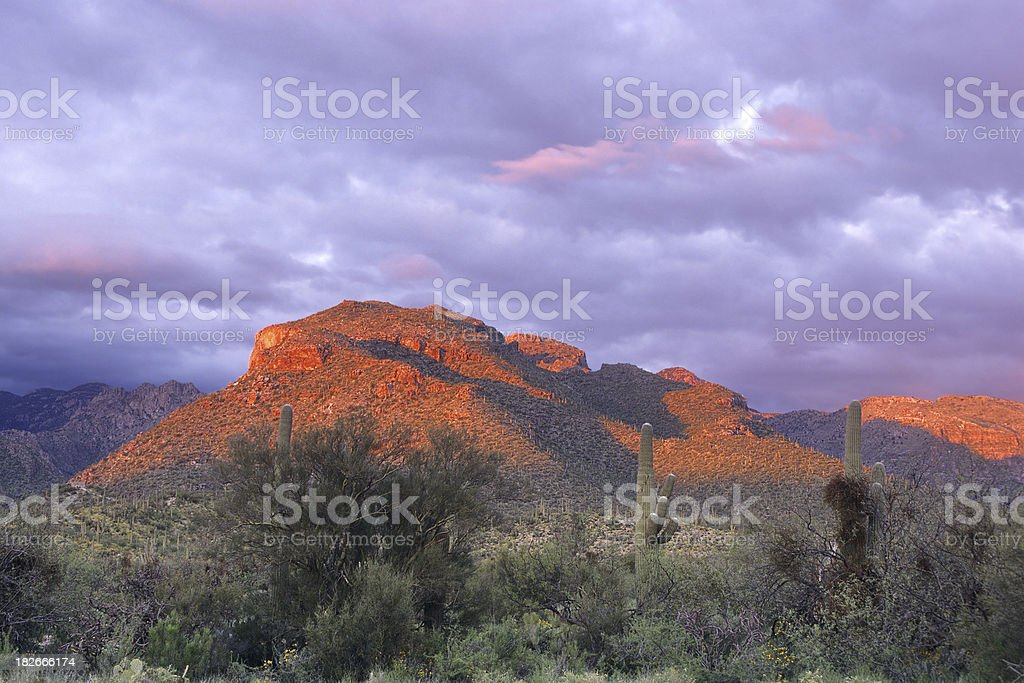 Alpenglow at Sabino Canyon stock photo
