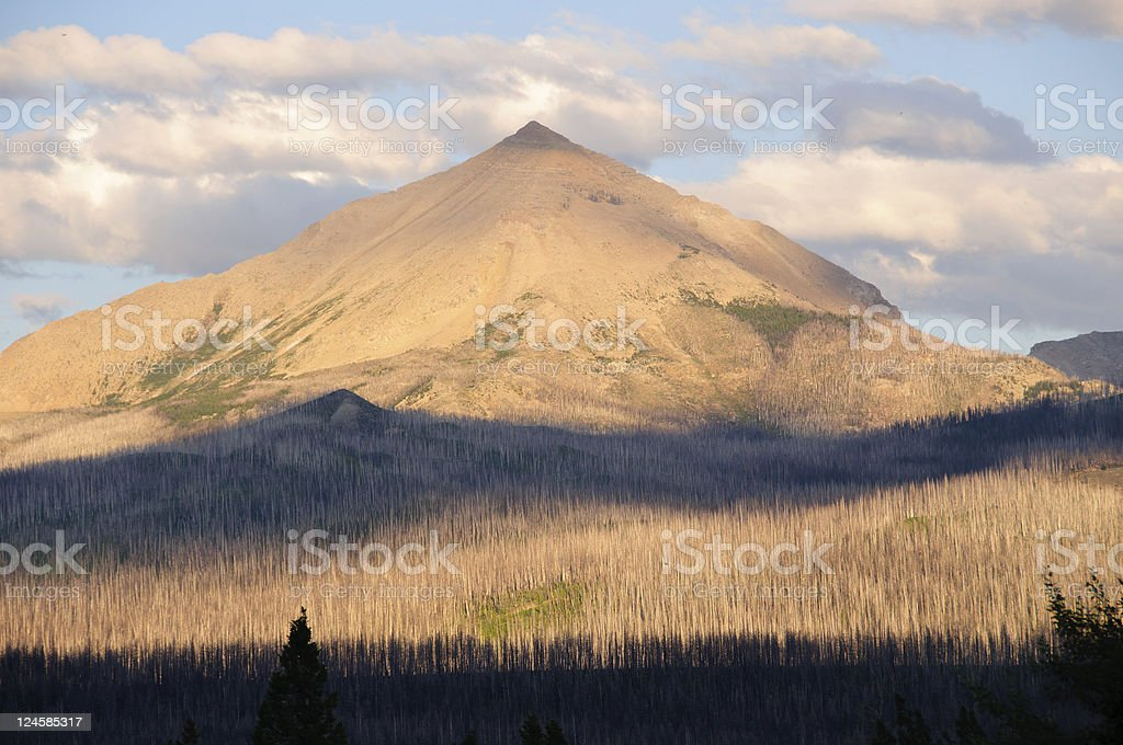 Alpenglow in the wilderness royalty-free stock photo