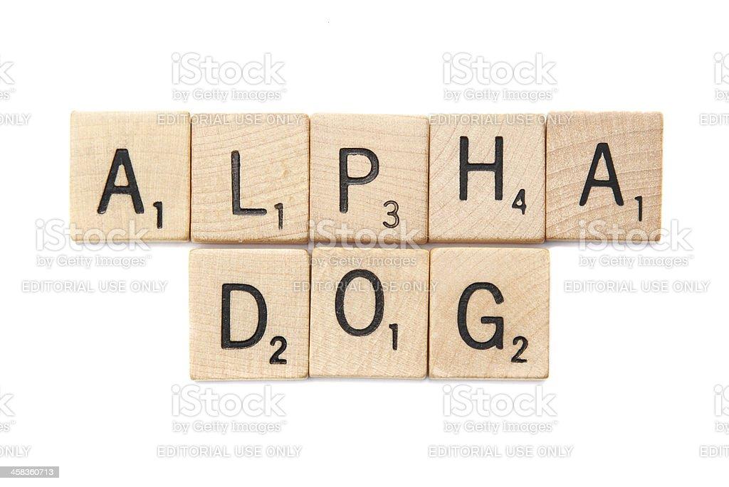 Alpha cane scritto in lettere del gioco scrabble fotografie stock