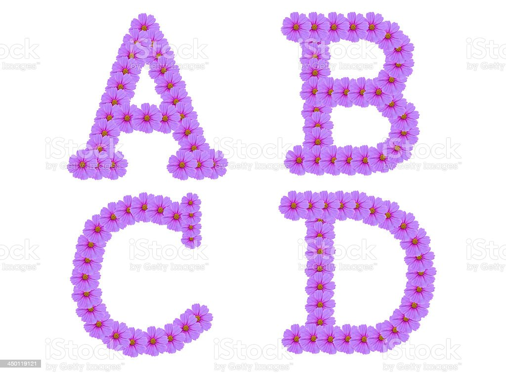 Alphabet A B C D, Cosmos flower isolated on white royalty-free stock photo
