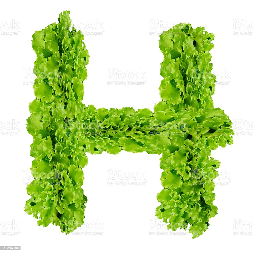 Alphabet H made from green leaves on isolated stock photo