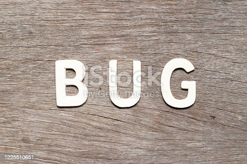 istock Alphabet letter in word bug on wood background 1225510651
