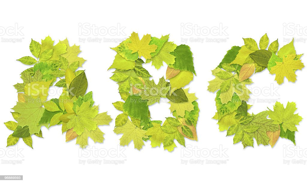 Alphabet - letters with a green leaves royalty-free stock photo