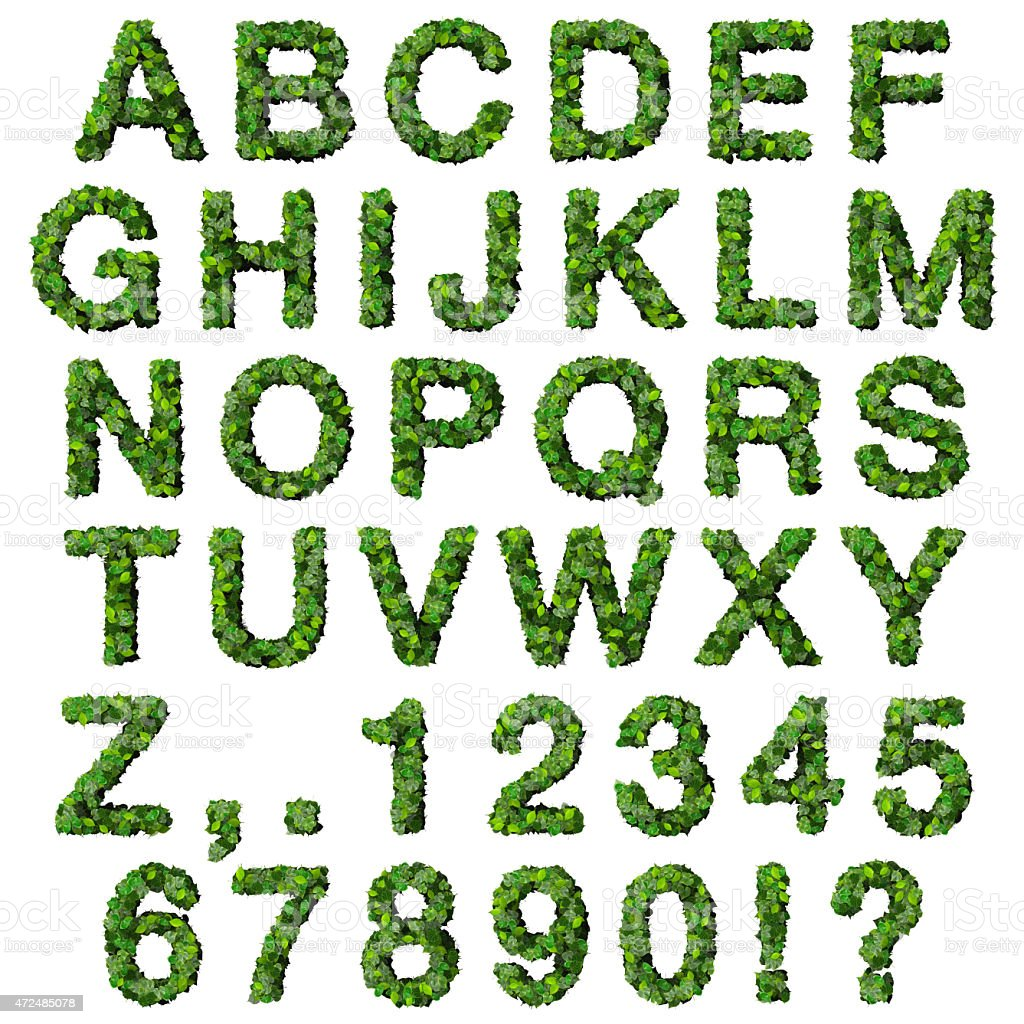 Alphabet avec des numéros de feuilles vertes - Photo