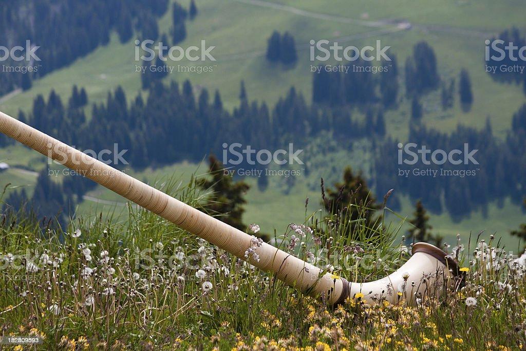 Alphorn In The Meadow stock photo