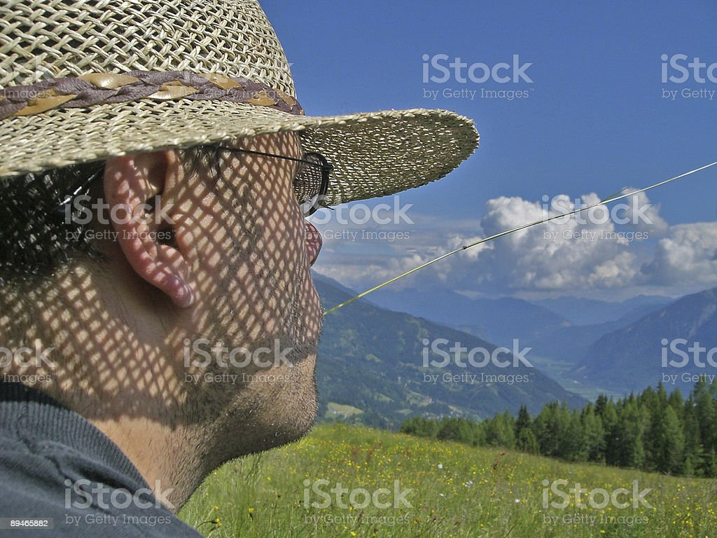 Alpine austria meadow relax man looking at view, mountains royalty-free stock photo