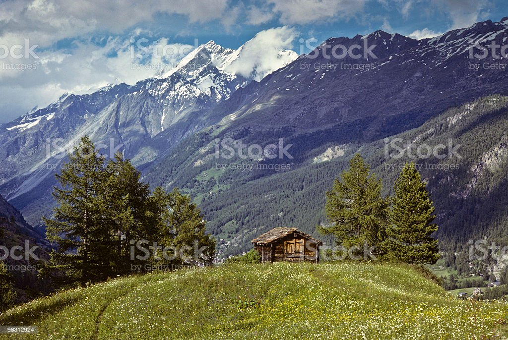 Alpine Cabin in a Meadow royalty-free stock photo