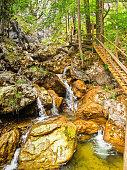 Deep forest stream with in famous Austrian ravine, Barenshutzklamm.
