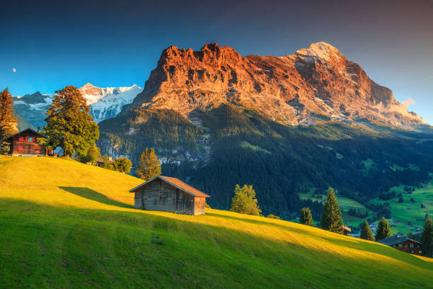 Alpine chalets with green fields and high mountains at sunset stock photo