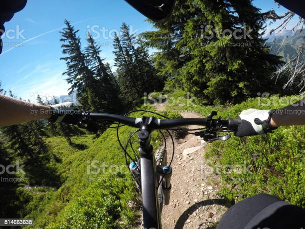 Photo of Alpine forest on a bike
