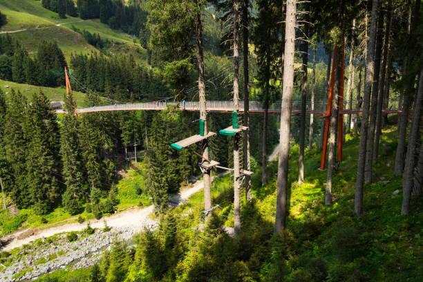 alpine golden gate brücke in saalbach-hinterglemm tal, alpen, österreich - baumwipfelpfad stock-fotos und bilder