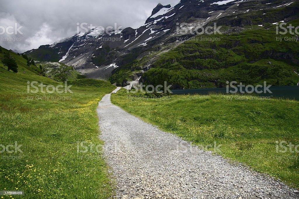 Alpine Hiking Path royalty-free stock photo