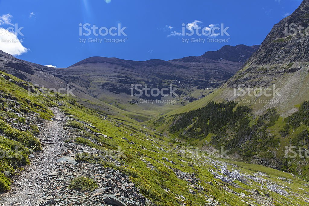 Alpine Hiking Path royalty-free stock photo