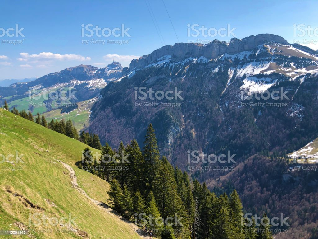 Alpine Hill Alp Sigel In The Alpstein Mountain Range And In The Images, Photos, Reviews