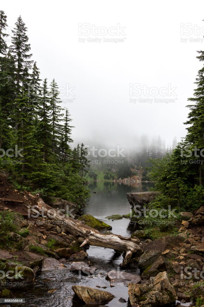 Alpine Lake Surrounded by Fog and Conifer Trees stock photo