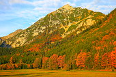 Alpine landscape in Austrian Tirol, near Karwendel mountain range and Bavarian alps in Germany - Majestic alpine landscape in gold colored autumn, dramatic Tyrol Snowcapped mountains panorama and Idyllic Tirol meadows, Austria