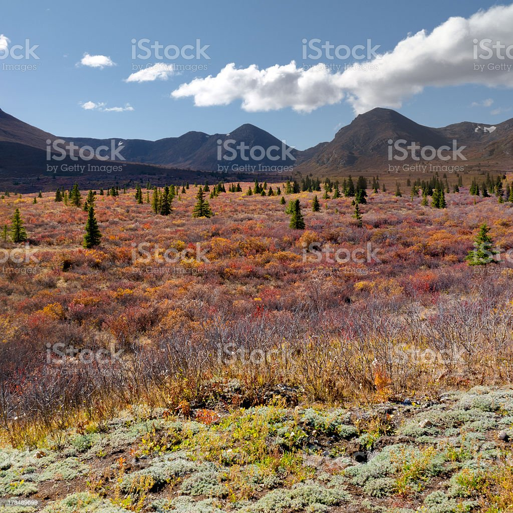 Alpine landscape in fall royalty-free stock photo