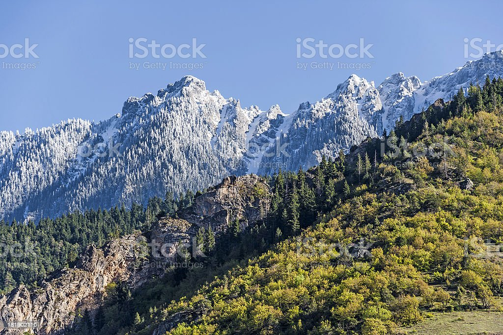 Alpine Landscape royalty-free stock photo