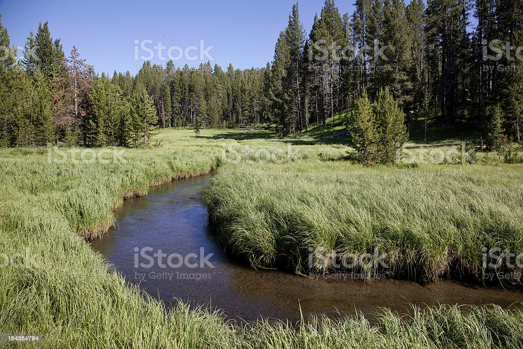Alpine Meadow and Stream stock photo