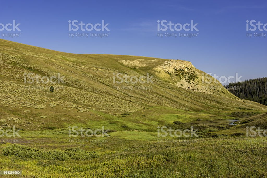 Alpine Meadow Bighorn National Forest Wyoming USA stock photo