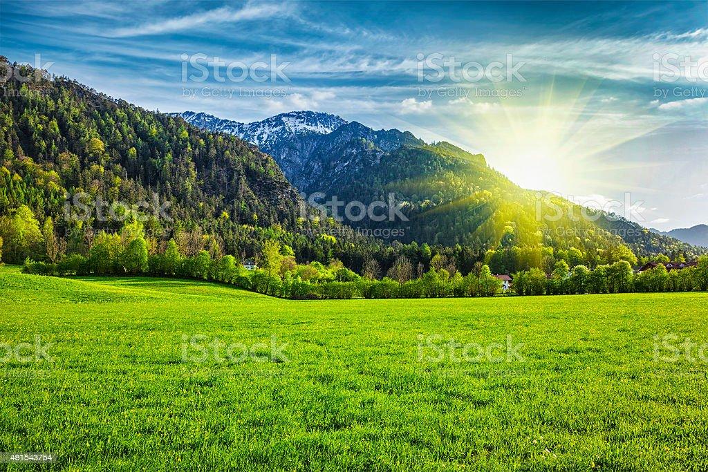 Alpine meadow in Bavaria,  Germany stock photo