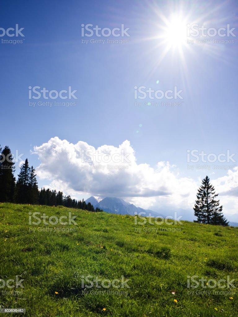 Alpine meadow in bavarian alps at Karwendel mountains in sunlight stock photo