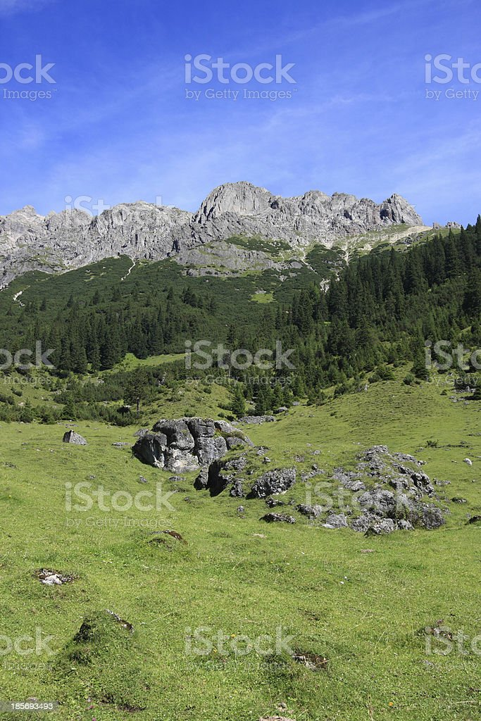 Alpine meadow in Tirol royalty-free stock photo