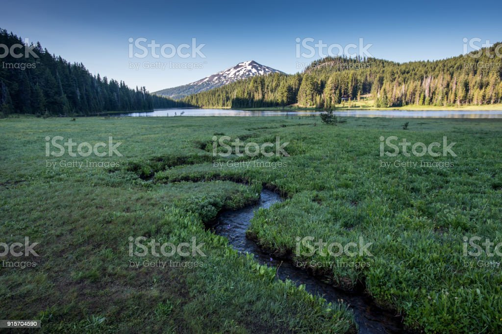 Alpine meadow with creek winding through stock photo