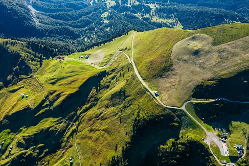 Green alpine meadows, covered with pine forest. Shot taken in Naturpark Puez-Geisler, Italian Dolomites.