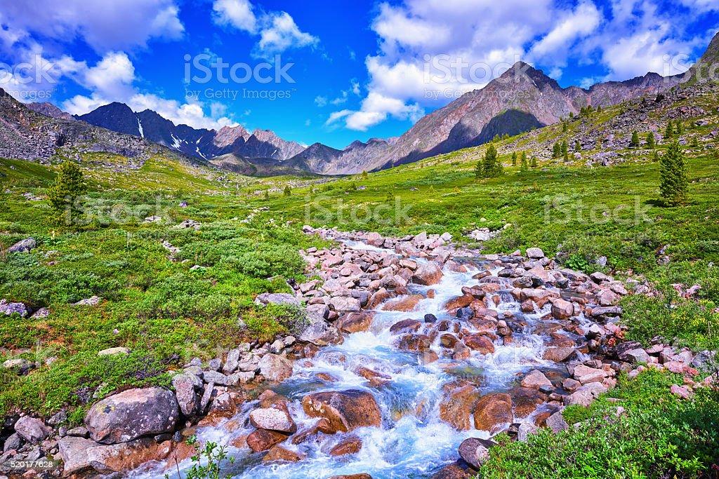 Alpine Meadows Siberian highlands stock photo