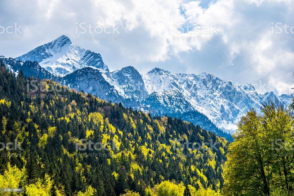 Alpine Mountains and Trees stock photo