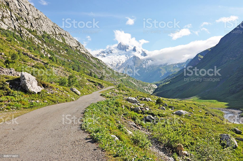 Alpine nature stock photo