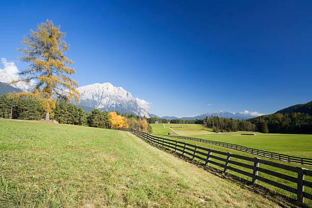 alpine pasture in autumn stock photo