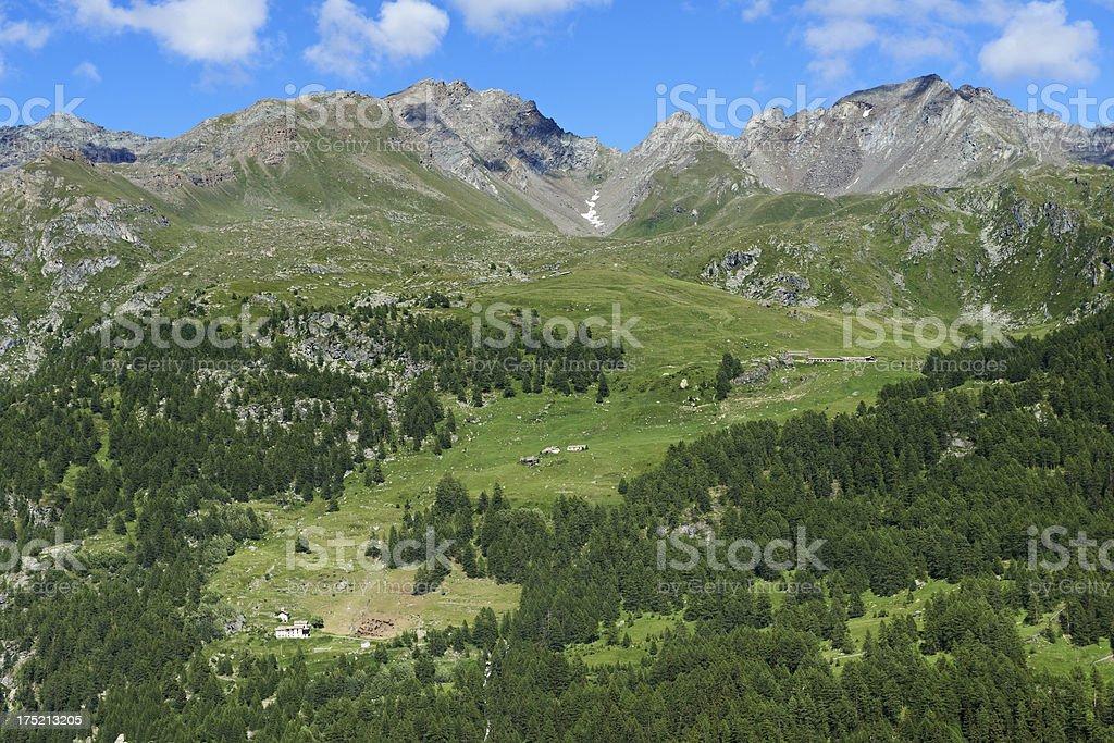Alpine Pasture stock photo