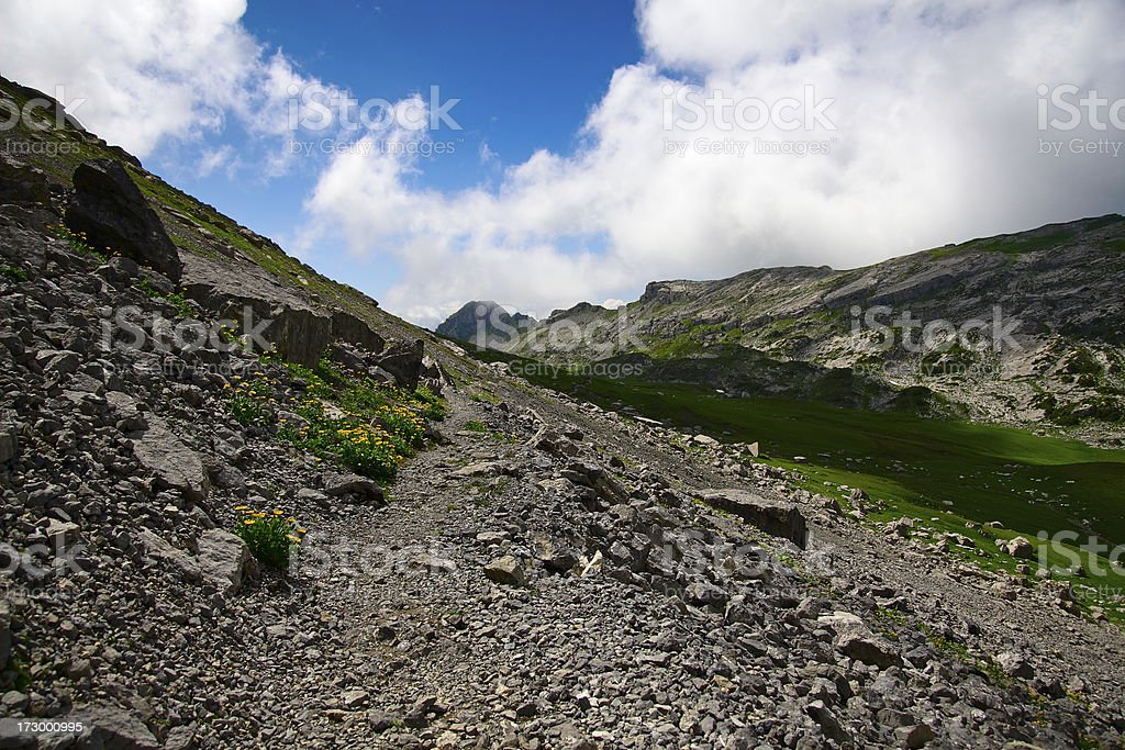 Alpine Path royalty-free stock photo