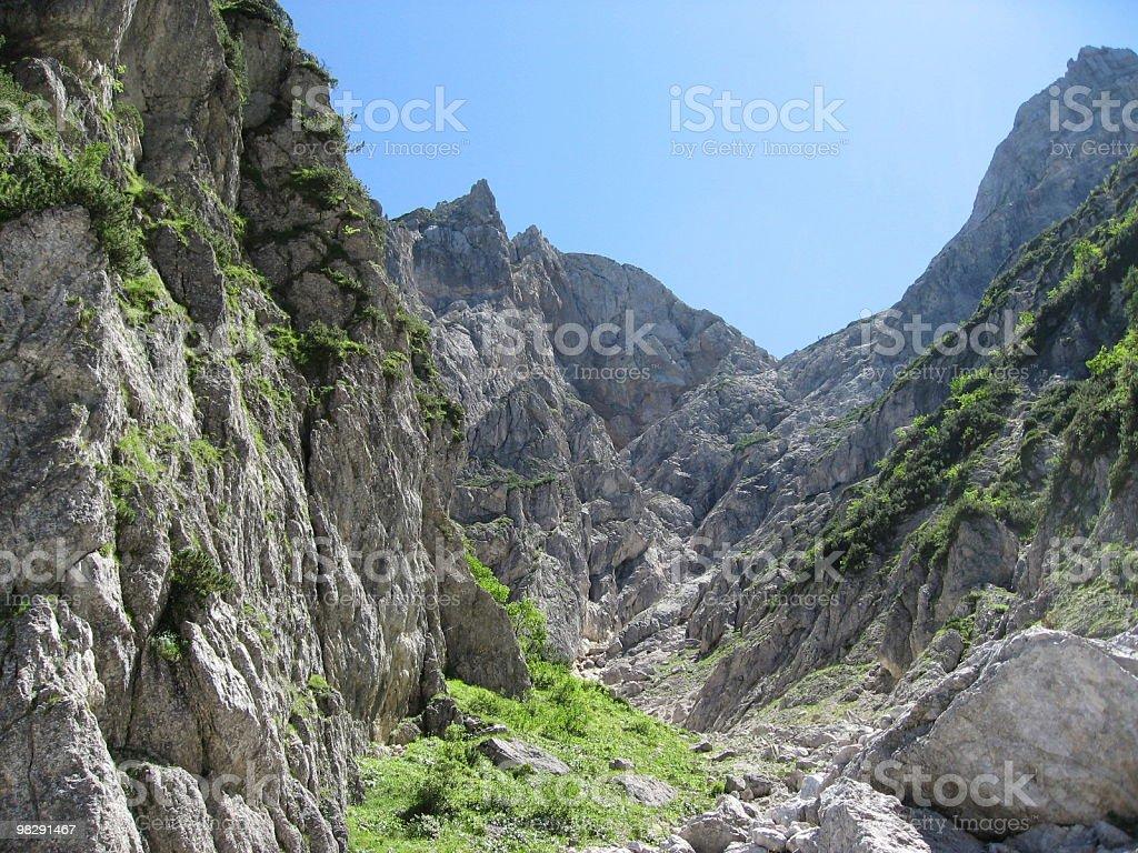 Alpine Ravine royalty-free stock photo