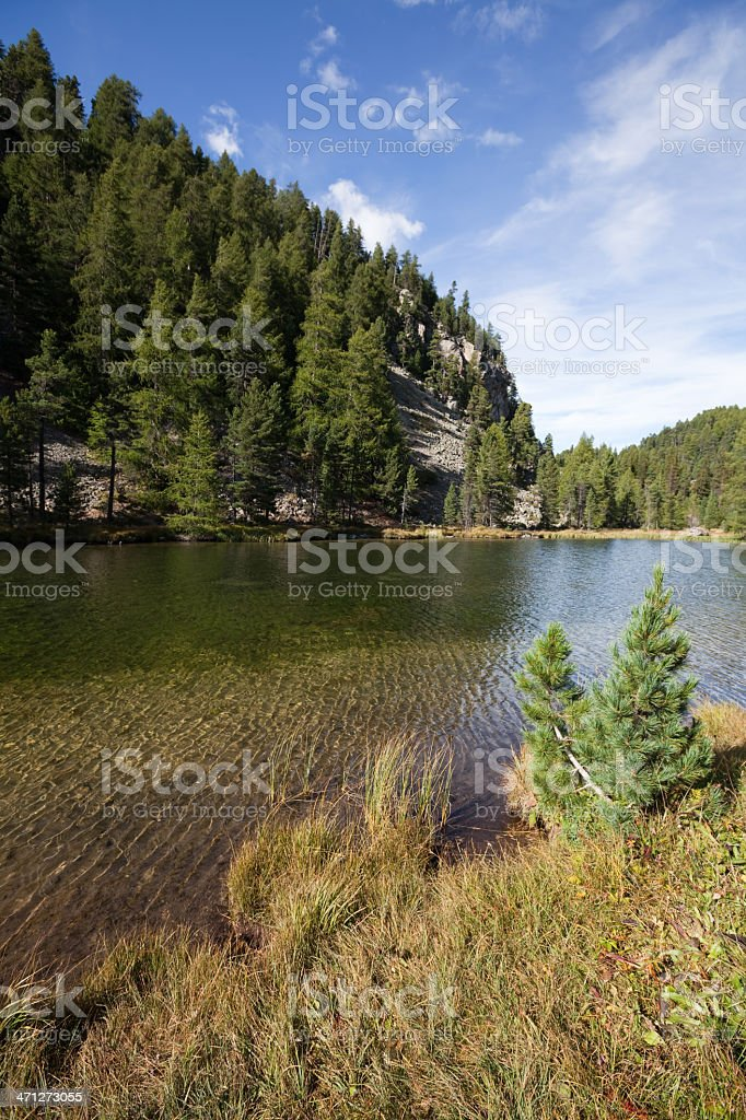 Alpine Scenery and Crystal Clear Water at Surlej, Engadine, Switzerland royalty-free stock photo