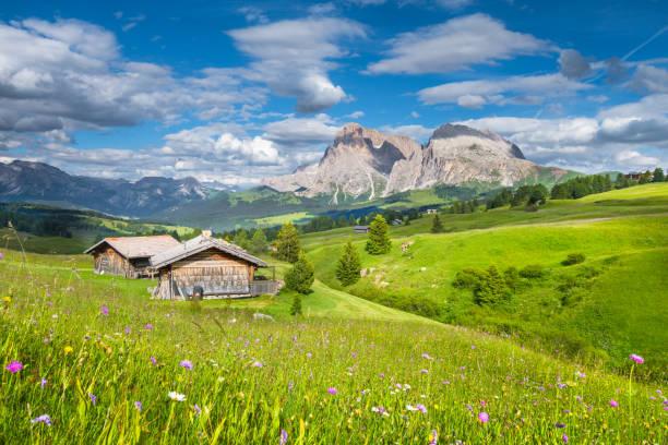 alpine landschaft in den dolomiten mit grünen wiesen und berghütten in alpe di siusi, südtirol, italien - seiser alm stock-fotos und bilder