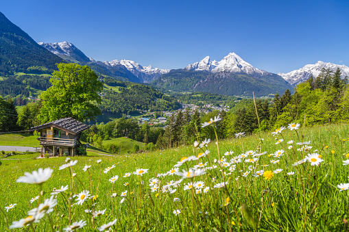 Alpine scenery with mountain chalet in summer