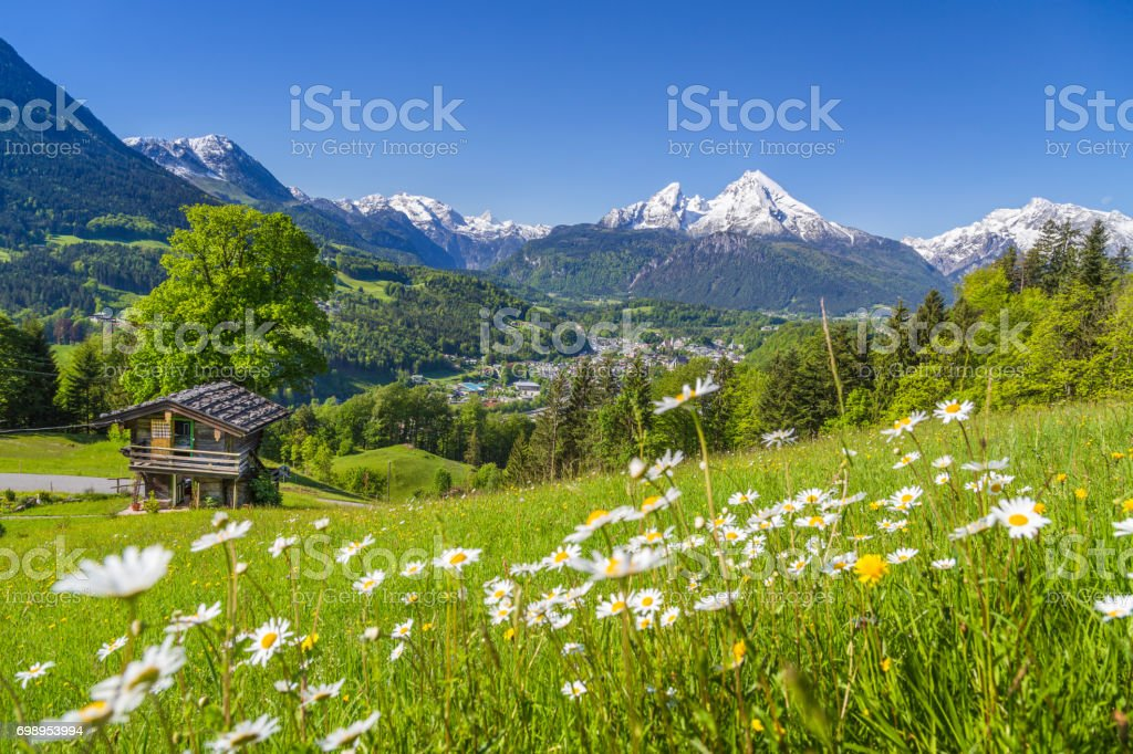 Alpine scenery with mountain chalet in summer stock photo
