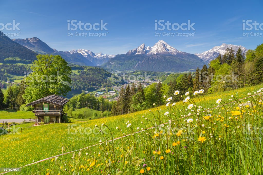 Alpine scenery with traditional mountain chalet in summer stock photo