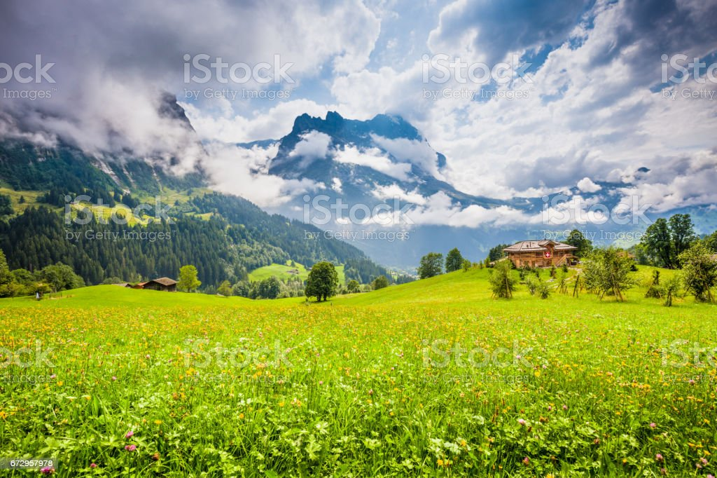 Alpine Scenery With Traditional Mountain Chalets In