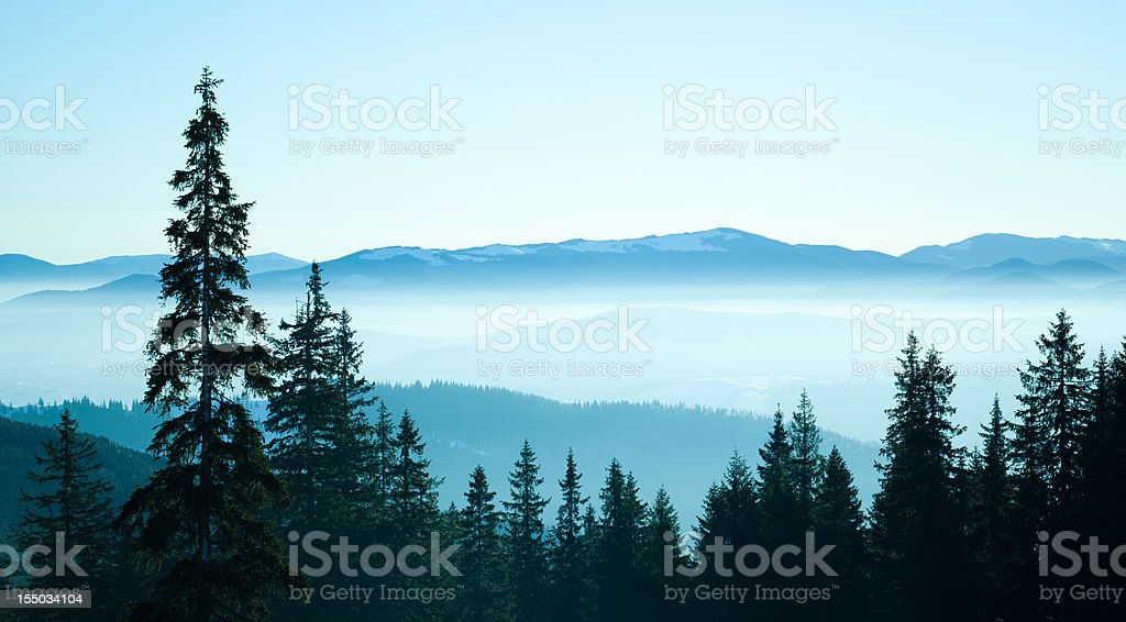 Alpine Scenic in Fog royalty-free stock photo