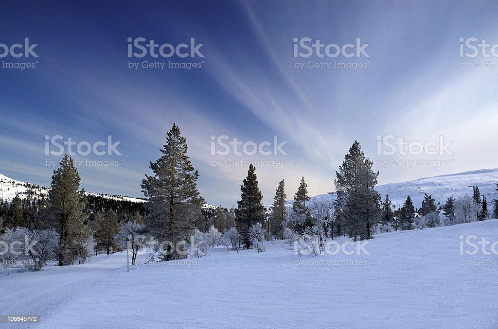Alpine Scenic royalty-free stock photo