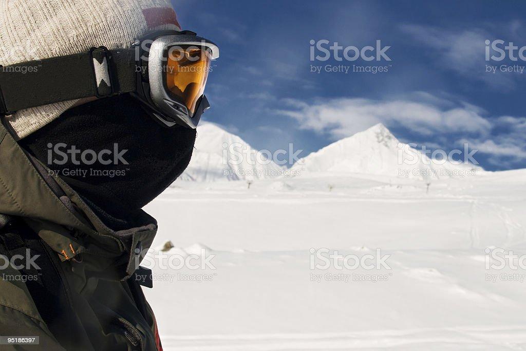 Alpine Skiing royalty-free stock photo